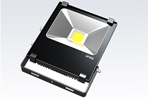 20W Finned LED Flood Light