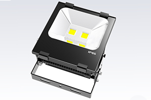100W Finned LED Flood Light