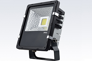 30W Economic Finned LED Flood Light