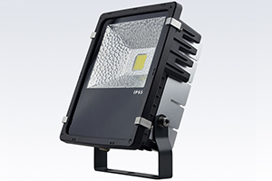 50W Economic Finned LED Flood Light