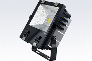 70W Economic Finned LED Flood Light